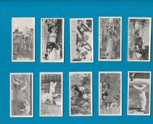 Cigarette cards set,Whipsnade Zoo Polar Bear, Lion  Elephant,